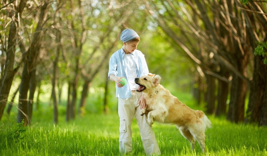 boy playing catch with his pet dog